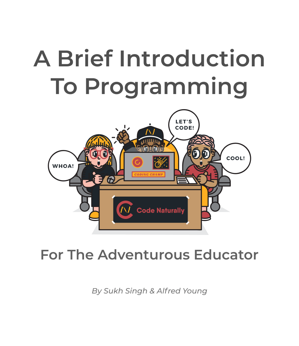 Brief Introduction to Programming eBook